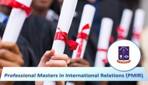 Is it better to go for an academic masters or a professional masters?